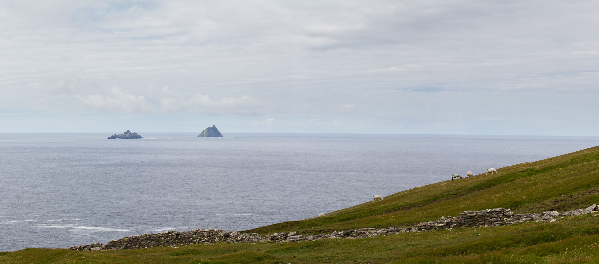 Vue sur les îles Skellig