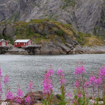 Alentours de Nusfjord